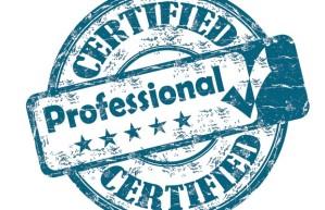 professional-620x400